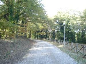 montepeglia